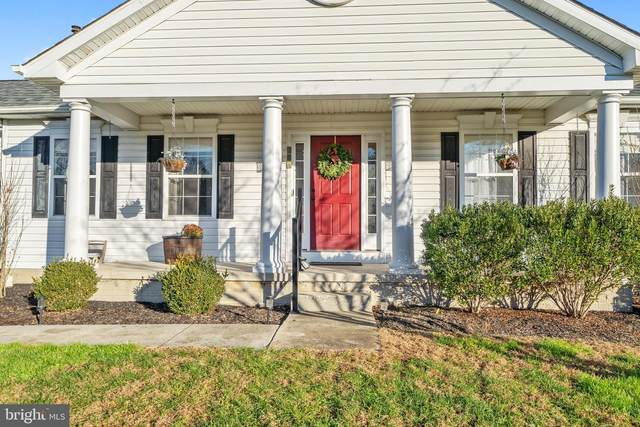 204 Turtleback Court, RISING SUN, MD 21911 (#MDCC172464) :: AJ Team Realty