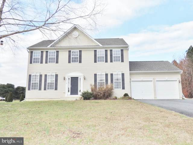 29118 Redfox Drive, SALISBURY, MD 21801 (#MDWC110830) :: The Redux Group