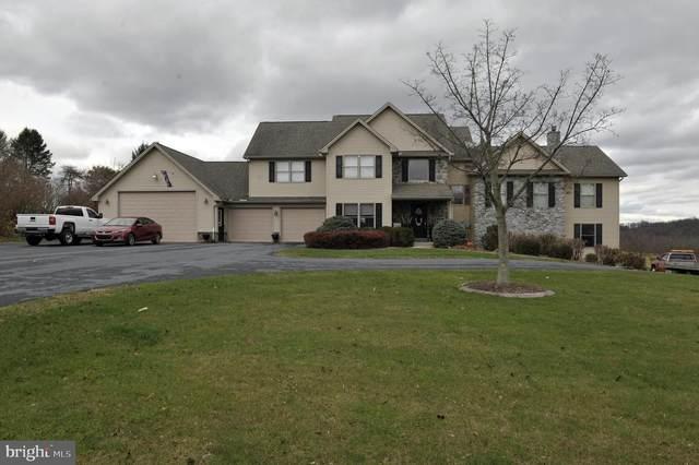 125 Old York Road, DILLSBURG, PA 17019 (#PAYK149924) :: The Joy Daniels Real Estate Group