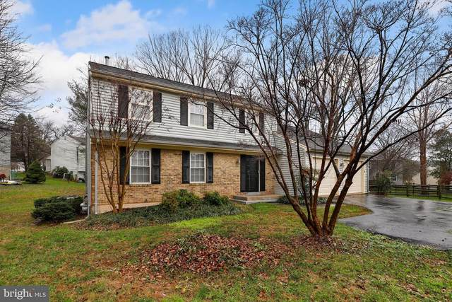 15720 Buena Vista Drive, ROCKVILLE, MD 20855 (#MDMC736874) :: Certificate Homes