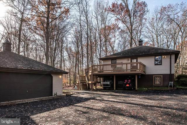 466 Windwood Coves Boulevard, MINERAL, VA 23117 (#VALA122368) :: The Redux Group
