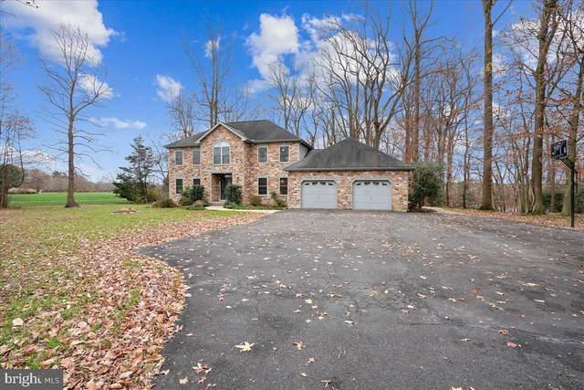 24351 Asbury Drive, DENTON, MD 21629 (#MDCM124840) :: Brandon Brittingham's Team
