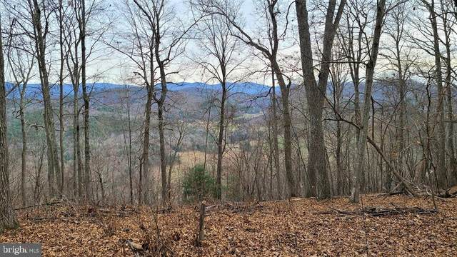 Lot #23, Stone Fly Drive, SUGAR GROVE, WV 26815 (#WVPT101608) :: Pearson Smith Realty