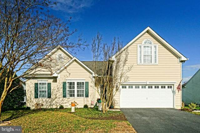 33277 Harbor Reach Drive, LEWES, DE 19958 (#DESU174112) :: The Poliansky Group