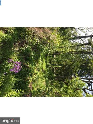 6085 Upper Mountain Road, SOLEBURY, PA 18938 (#PABU516906) :: Certificate Homes