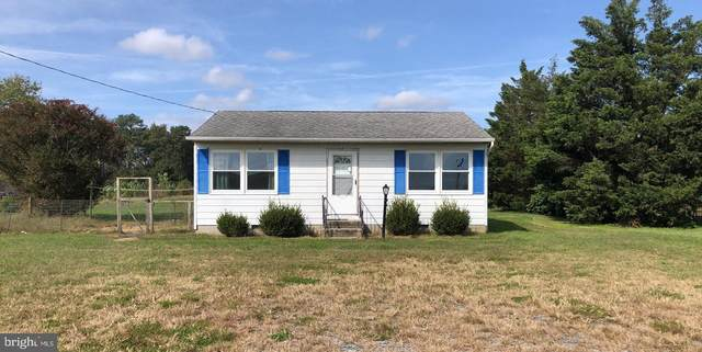 30242 Millsboro Highway, MILLSBORO, DE 19966 (#DESU174172) :: Jim Bass Group of Real Estate Teams, LLC