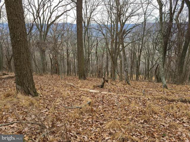 19 High Knob, OLD FIELDS, WV 26845 (#WVHD106498) :: The Redux Group