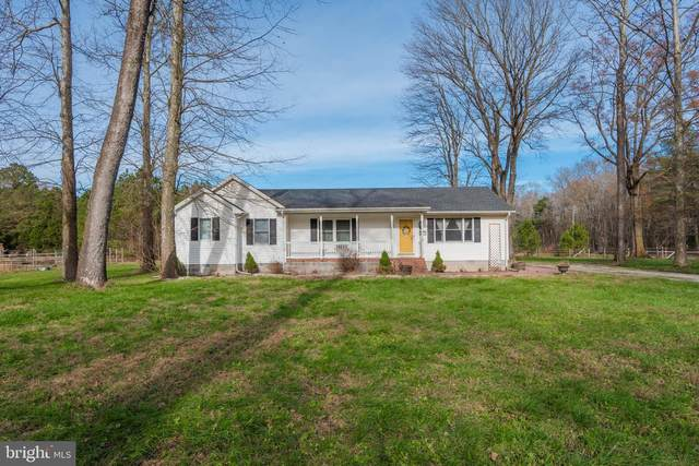 24862 Porter Mill Road, HEBRON, MD 21830 (#MDWC110850) :: The Redux Group