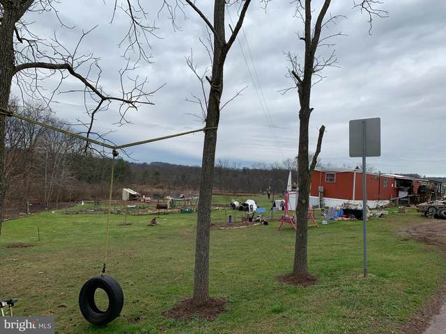 0 W Side Of Wild Cherry Road, SCHUYLKILL HAVEN, PA 17972 (#PASK133630) :: Nexthome Force Realty Partners