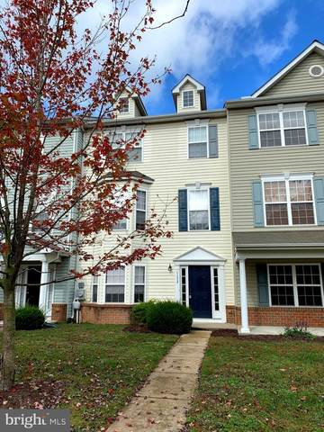 1152 Canvasback Lane, DENTON, MD 21629 (#MDCM124860) :: The Redux Group