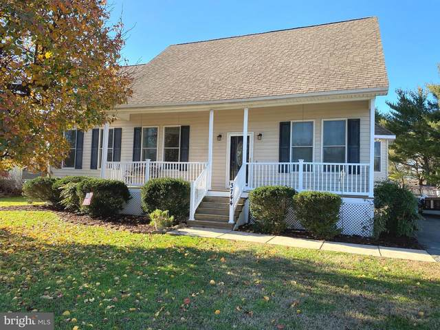 3744 Seymour Drive, TRAPPE, MD 21673 (MLS #MDTA139946) :: Maryland Shore Living | Benson & Mangold Real Estate