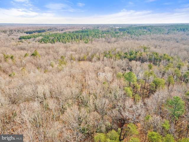 6021 Black Snake Court, SPOTSYLVANIA, VA 22551 (#VASP227430) :: Crossman & Co. Real Estate