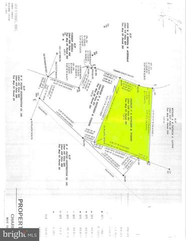Lot 11 Red Pine Lane, MC HENRY, MD 21541 (#MDGA134064) :: SURE Sales Group