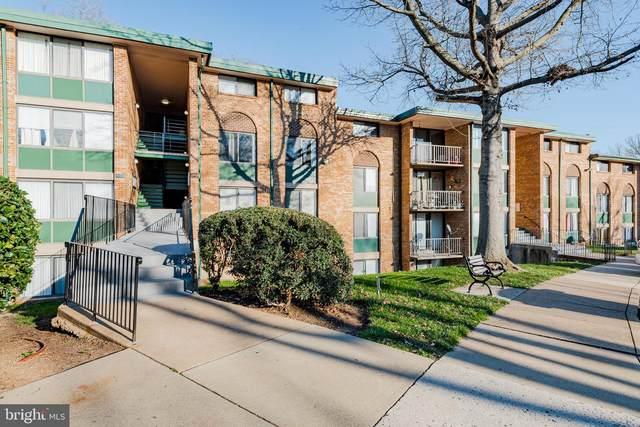 493 N Armistead Street T2, ALEXANDRIA, VA 22312 (#VAAX254184) :: Fairfax Realty of Tysons