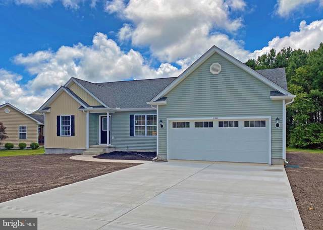 22285 Holly Oak Lane, LEWES, DE 19958 (#DESU174612) :: Sunrise Home Sales Team of Mackintosh Inc Realtors