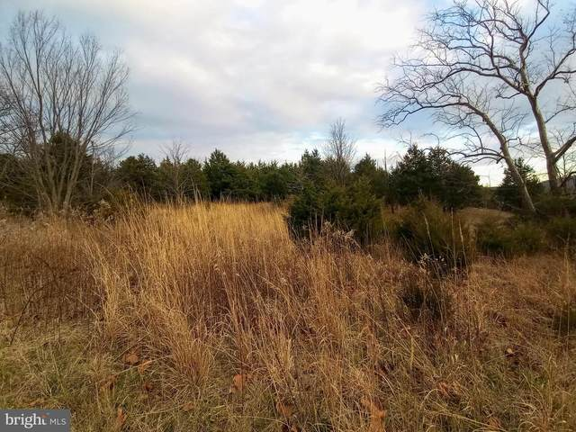1.54 ACRES Sky Valley Drive, CABINS, WV 26855 (#WVGT103380) :: AJ Team Realty