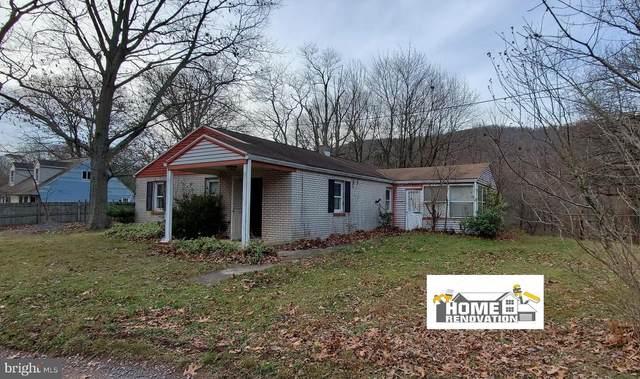 1461 Fieldstone Lane, DAUPHIN, PA 17018 (#PADA128630) :: Liz Hamberger Real Estate Team of KW Keystone Realty