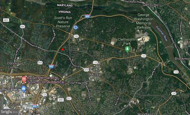 Swinks Mill Road, MCLEAN, VA 22102 (#VAFX1172246) :: Nesbitt Realty