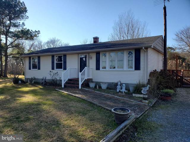 9774 Deal Island Road, DEAL ISLAND, MD 21821 (#MDSO104210) :: RE/MAX Coast and Country