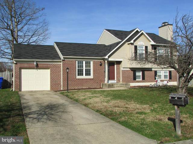 11731 Torcello Court, WALDORF, MD 20601 (#MDCH220258) :: AJ Team Realty