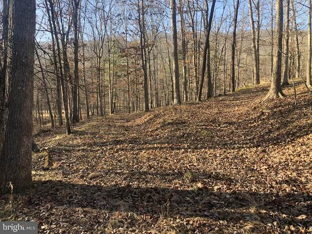 91 Trough Road, MOOREFIELD, WV 26836 (#WVHD106516) :: Eng Garcia Properties, LLC
