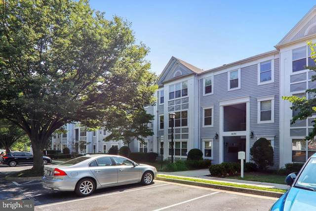 14101 Valleyfield Drive 10-4, SILVER SPRING, MD 20906 (#MDMC738274) :: Bic DeCaro & Associates