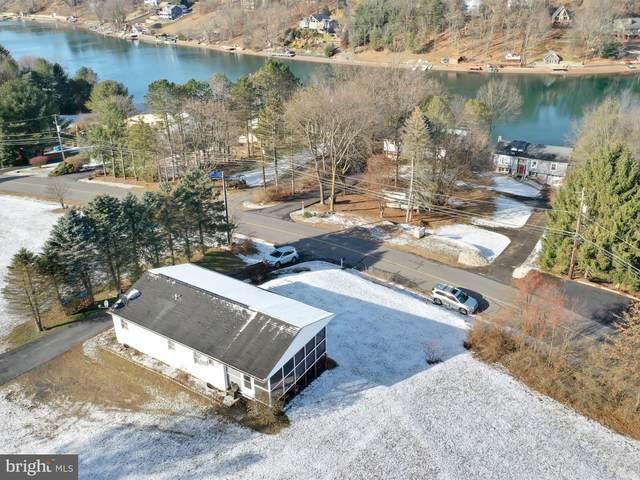 701 Wynonah Drive, AUBURN, PA 17922 (#PASK133734) :: The Joy Daniels Real Estate Group