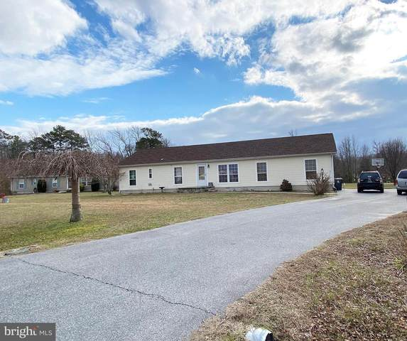 23038 Deep Creek Drive, LINCOLN, DE 19960 (#DESU174778) :: Atlantic Shores Sotheby's International Realty