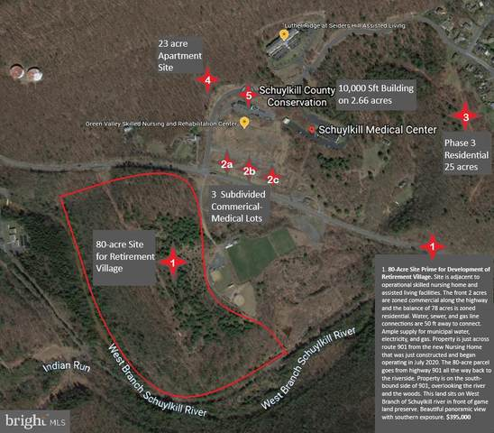 646 Gordon Nagle Trail (Route 901) 80-ACRES, POTTSVILLE, PA 17901 (#PASK133742) :: Ramus Realty Group