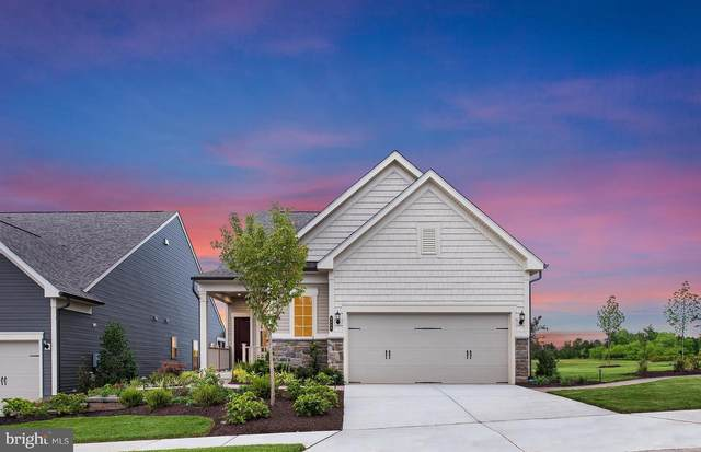 6864 Moonstone Peony Lane #1, HAYMARKET, VA 20169 (#VAPW511738) :: AJ Team Realty