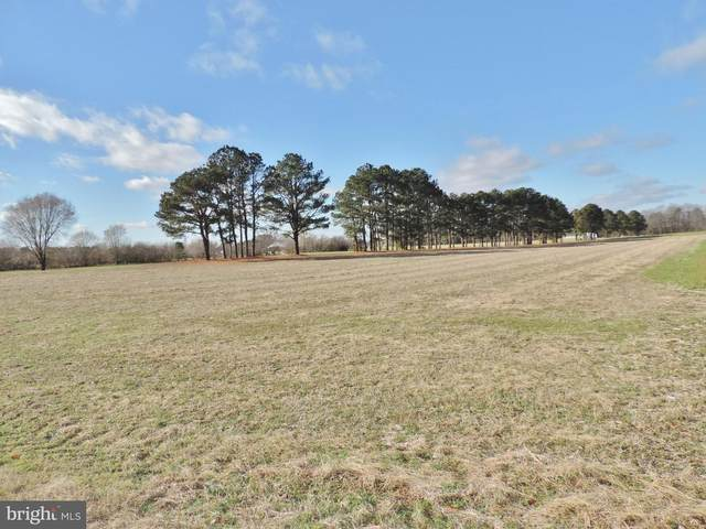 Lot 1 Athol Road, MARDELA SPRINGS, MD 21837 (#MDWC111026) :: AJ Team Realty