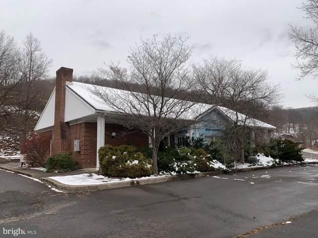 Westernport Road, WESTERNPORT, MD 21562 (#MDAL135998) :: Dart Homes