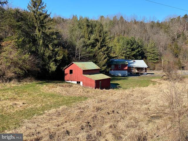 7585 Purgitsville Pike, PURGITSVILLE, WV 26852 (#WVHS115134) :: Pearson Smith Realty