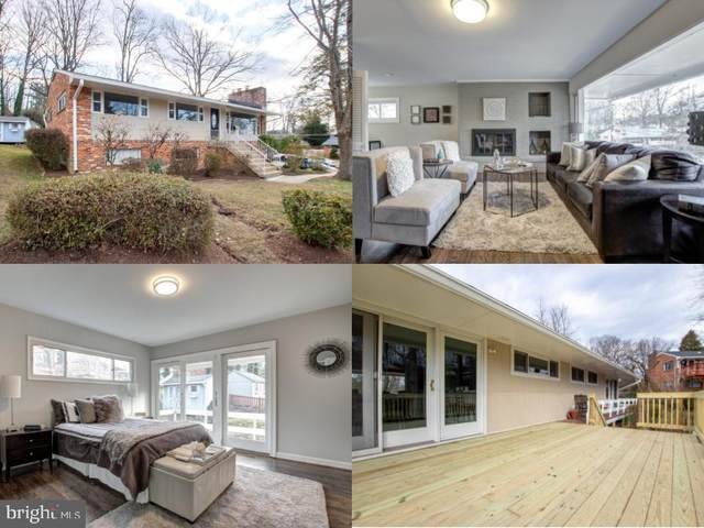 7019 Marguerite Court, ANNANDALE, VA 22003 (#VAFX1173106) :: Colgan Real Estate