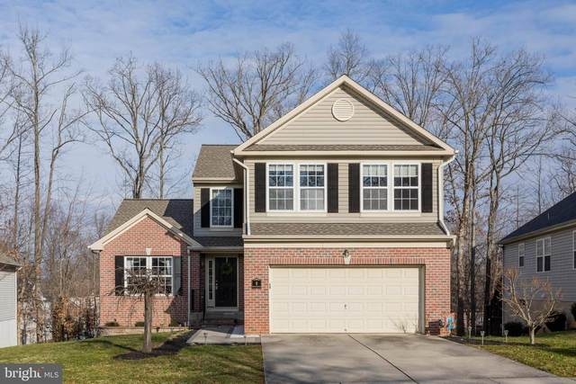 8 John Adams Lane, ELKTON, MD 21921 (#MDCC172700) :: The Piano Home Group