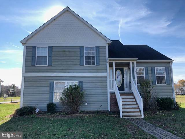 305 Edmonson Lane, EAST NEW MARKET, MD 21631 (#MDDO126616) :: RE/MAX Coast and Country