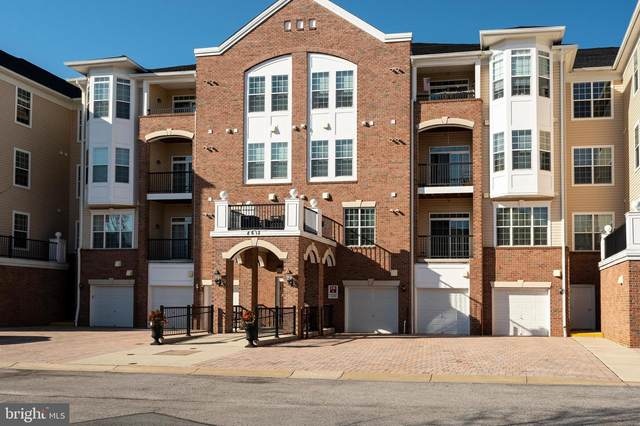 8612 Wintergreen Court #401, ODENTON, MD 21113 (#MDAA455712) :: The Piano Home Group