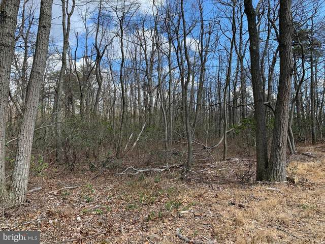 0 Endwood Trail, WINCHESTER, VA 22603 (#VAFV161506) :: Bruce & Tanya and Associates