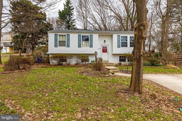 9332 Ripplestir Place, COLUMBIA, MD 21045 (#MDHW289206) :: Pearson Smith Realty