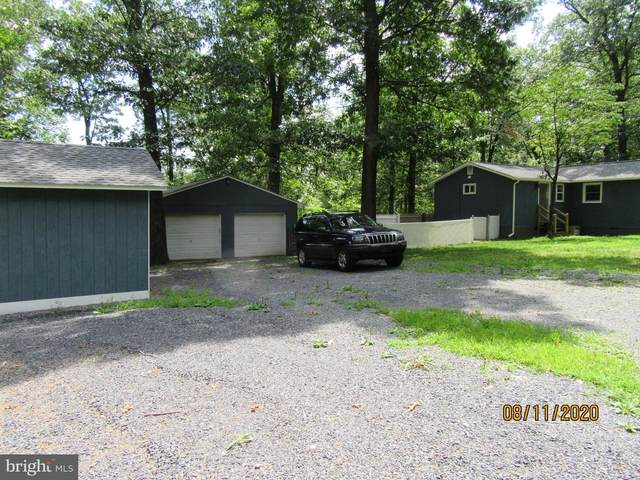 100 Flathead Trail, WINCHESTER, VA 22602 (#VAFV161568) :: The MD Home Team