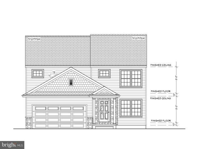 411 Jared Way, NEW HOLLAND, PA 17557 (#PALA175574) :: CENTURY 21 Home Advisors