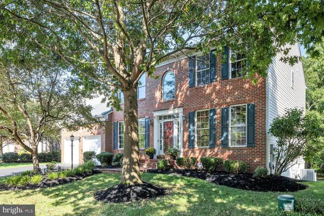 47261 Middle Bluff Place, STERLING, VA 20165 (#VALO428360) :: Pearson Smith Realty