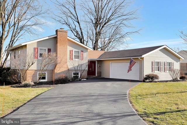 2007 Maplewood Drive, HAGERSTOWN, MD 21740 (#MDWA176984) :: Dart Homes
