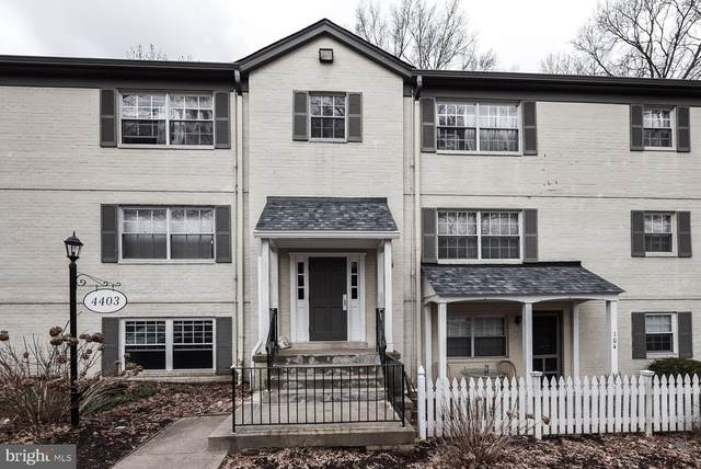 4403 Romlon Street #101, BELTSVILLE, MD 20705 (#MDPG593004) :: The Piano Home Group