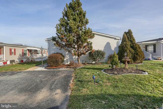 227 Greyfield Drive, LANCASTER, PA 17603 (#PALA175638) :: Liz Hamberger Real Estate Team of KW Keystone Realty