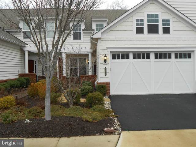 44434 Cruden Bay Drive, ASHBURN, VA 20147 (#VALO428482) :: The Dailey Group