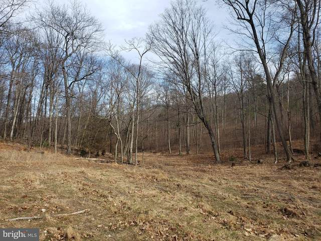 114-ACRES Baughman Settletment, BAKER, WV 26801 (#WVHD106542) :: Integrity Home Team