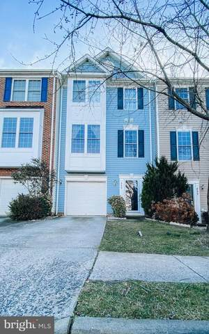 895 Persimmon Pl, CULPEPER, VA 22701 (#VACU143358) :: Bruce & Tanya and Associates
