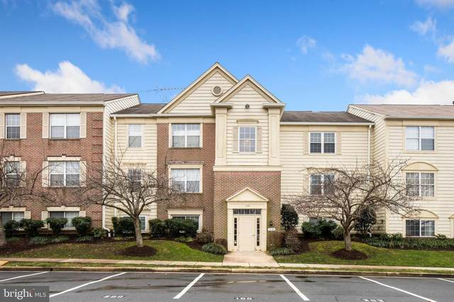 1130 Huntmaster Terrace NE #202, LEESBURG, VA 20176 (#VALO428524) :: Bowers Realty Group
