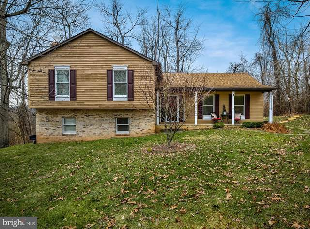 219 High Knob Road, FRONT ROYAL, VA 22630 (#VAWR142342) :: Eng Garcia Properties, LLC